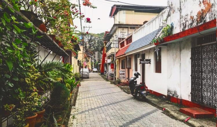 Pretty plant-lined street in Kochi, Kerala