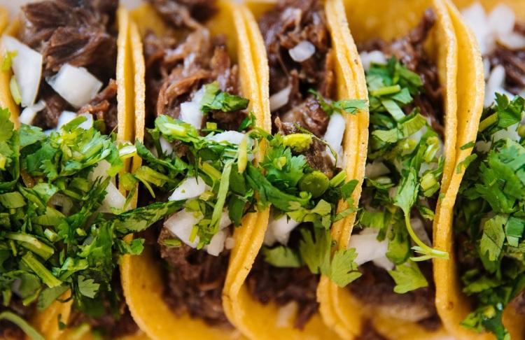 Pulled pork coriander tacos